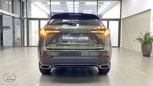 Đuôi xe Lexus NX 300 2020 2021